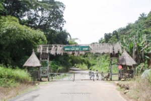 Ikogosi Warm Springs Resort  Where The Warm and Cold Flow Side by Side