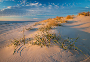 The Ultimate Long Beach Island Vacation Guide